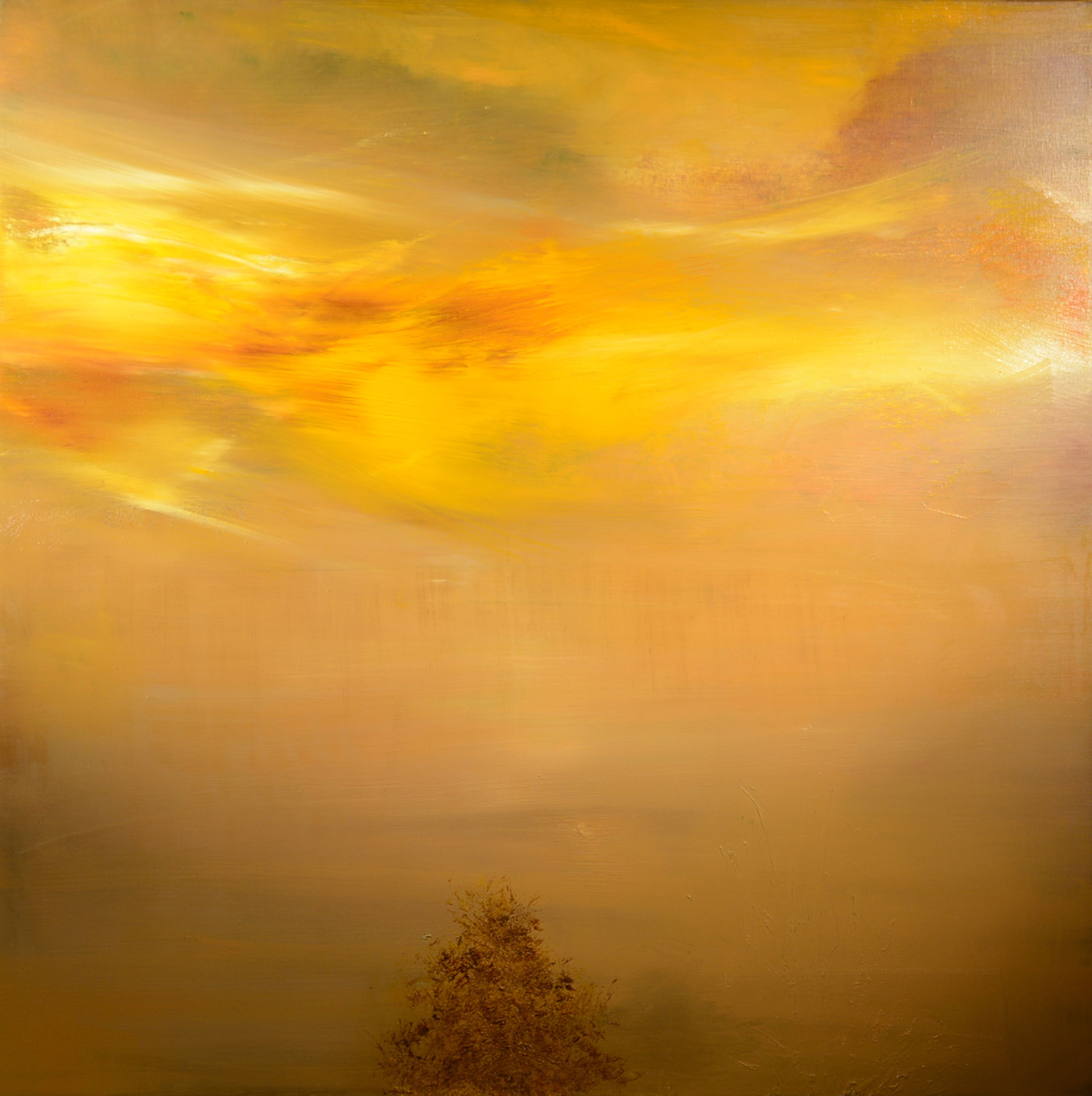 Maurice Sapiro - مائوریس سپیرو - Windsong